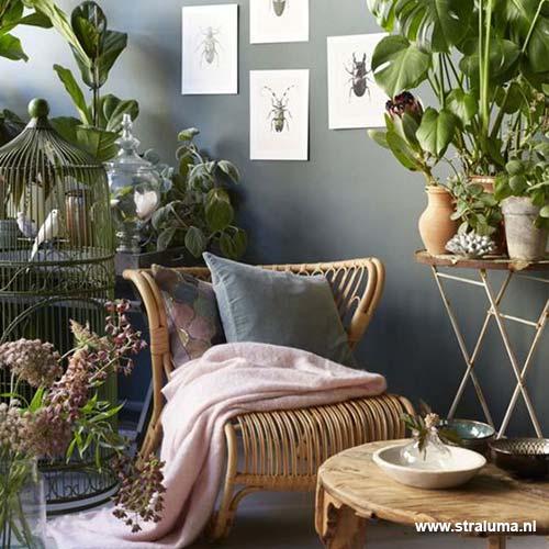 De beste lampen in het botanische interieur | Straluma