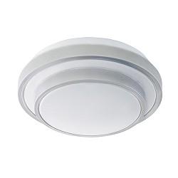 Kunstof LED plafondlamp wit met zilver