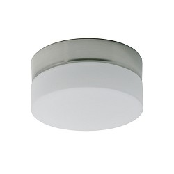 *Badkamer plafondlamp rond staal-wit gl.