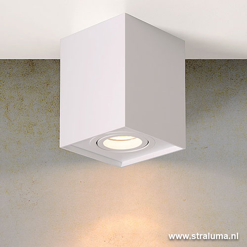 Design plafond opbouw spot tube wit straluma for Spot design plafond